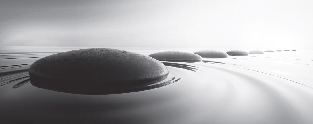 水に浮かんでいるレンズみたいな石